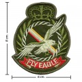 The Fly Eagle US Army Embroidered Iron On Patch