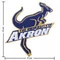 Akron Zips Style-1 Embroidered Iron On Patch