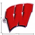 Wisconsin Badgers Style-1 Embroidered Iron On Patch